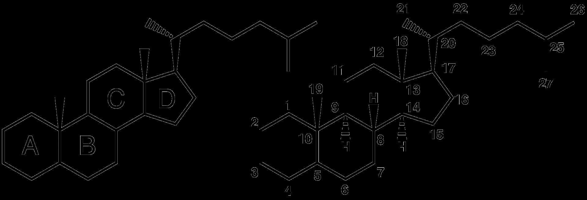 fluorinated steroids pregnancy
